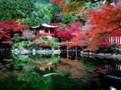 http://travel.rakuten.co.jp/special/kouyou/images/spotimg/61425_1.jpg